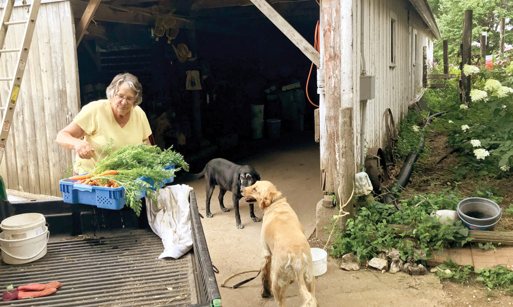 Yes Magazine Features Resilient Agriculture Farmers Ron and Maria Rosmann